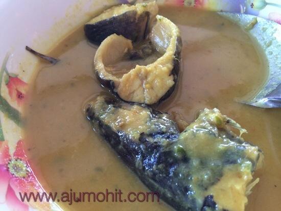 ikan baung selera rimba