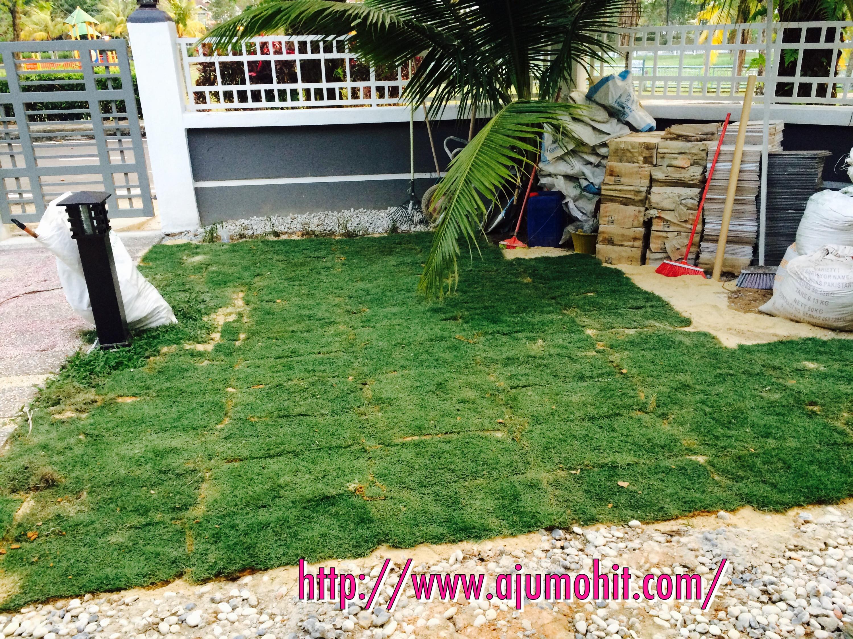 projek menanam rumput karpet