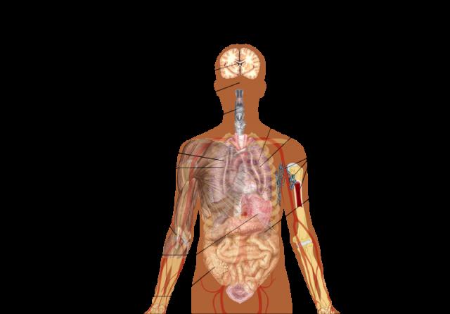 tanda dan simptom sebenar gejala demam Covid19