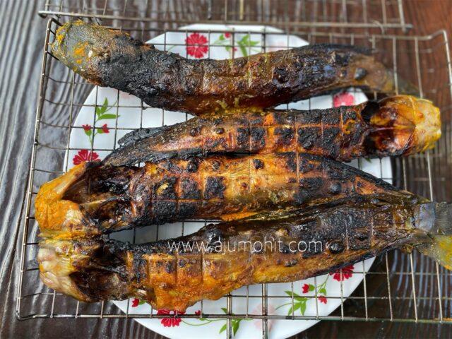 petua ikan keli salai tak melekat di pemanggang